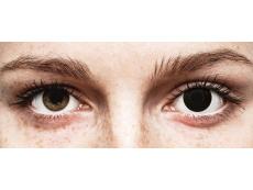 BlackOut Contact Lenses - ColourVue Crazy (2 coloured lenses)