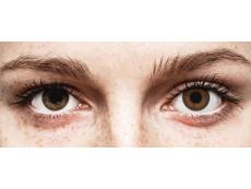 Brown contact lenses - Power - TopVue Color (10 daily coloured lenses)