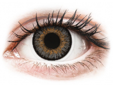 Grey contact lenses - FreshLook One Day Color - Power (10 daily coloured lenses)
