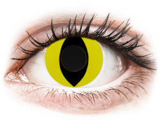 CRAZY LENS - Cat Eye Yellow - plano (2 daily coloured lenses)
